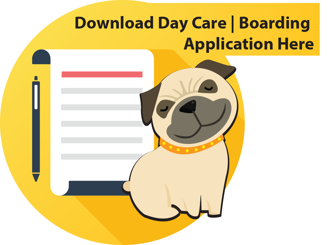 dog_boarding_application